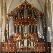 Zutphen Virtual Organ Model