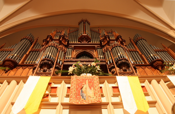Sonus Paradisi William Hill English Organ Model - England