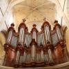 organ - maximin 4