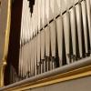 organ - Adriatic 11