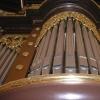 organ - velesovo 5