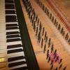 organ - Ruckers 4