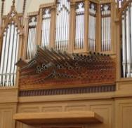 Litomysl Organ Model